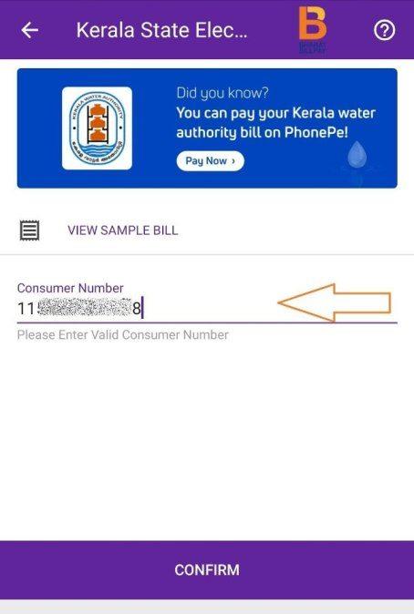 Consumer Number